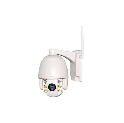 Caméra IP Dôme Blanc